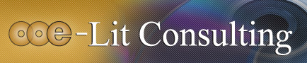 e-Lit Consulting